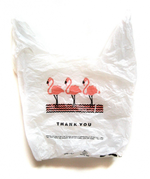 plastic bag NYC