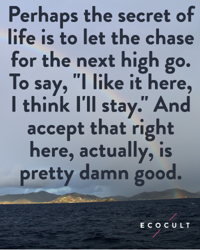 quote_chase