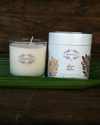 Non-Toxic Soy Candles - I love the scent of these candles, and ginger citron is the perfect scent for post-cleaning bliss.