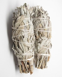 Sage - Clear out those bad feelings from the winter and start afresh.