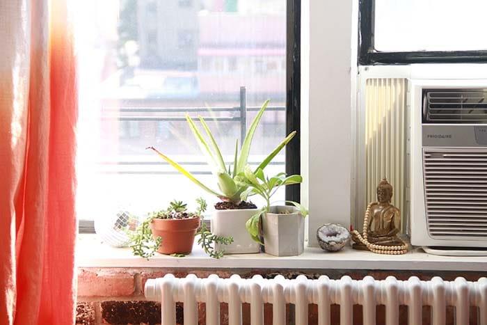 Window vignette buddha plants disco ball