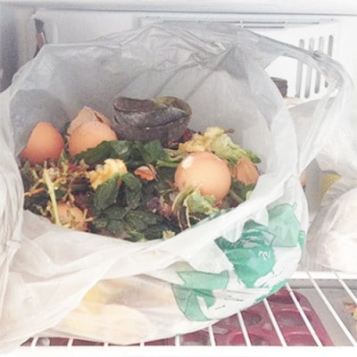 How to compost in NYC