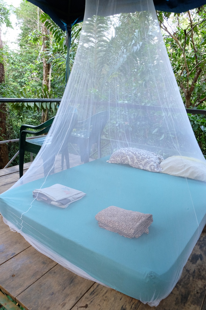 The bed and mosquito net in our canopy platform.