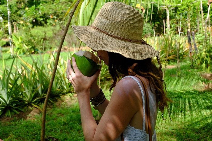 Drinking out of a coconut on a sustainable cacao farm in Puerto Jimenez.