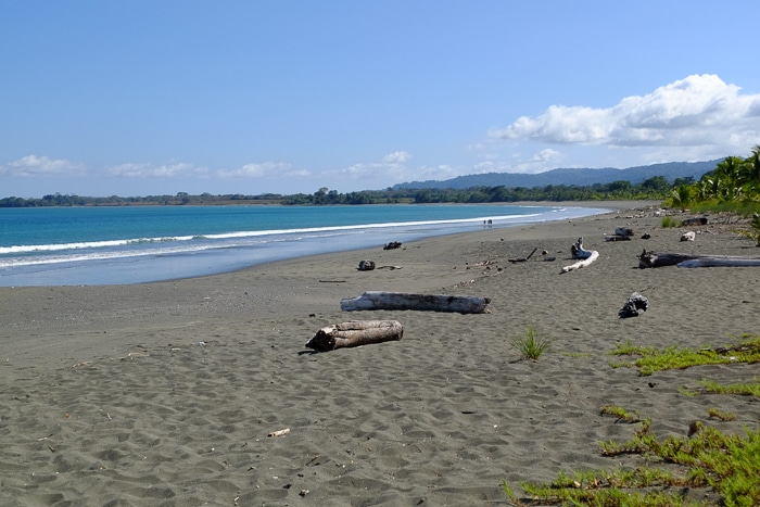 No people, as far as the eye can see, and warm, blue water at the beach in Puerto Jimenez.