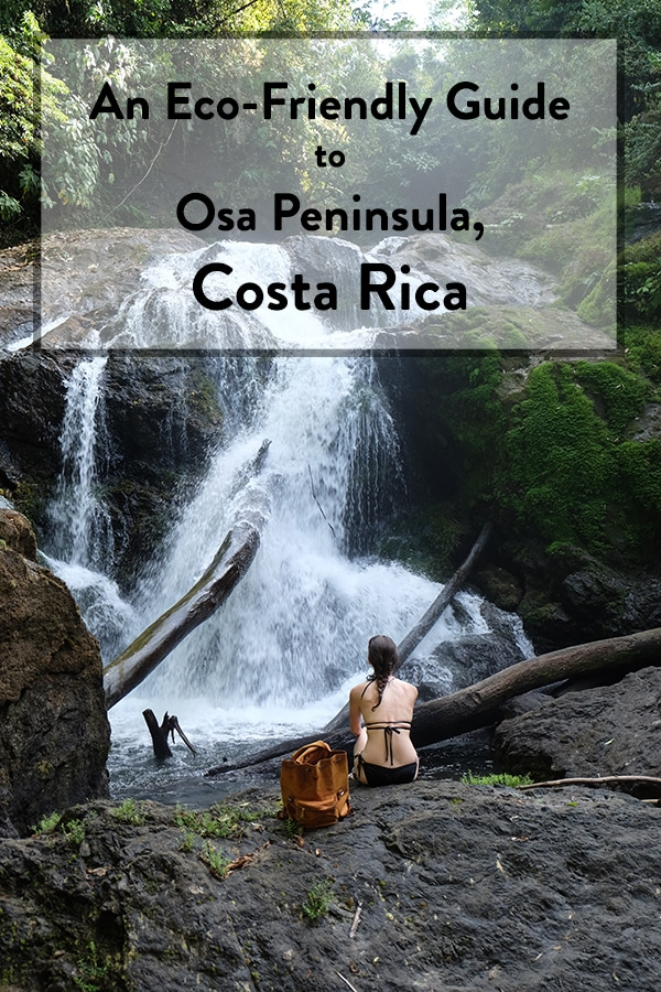 Sustainable stuff to do on your visit to Osa Peninsula, Costa Rica