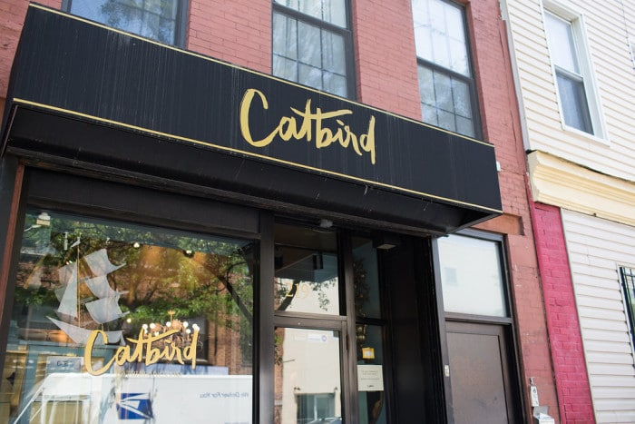 Sustainable shopping in Williamsburg brooklyn: catbird