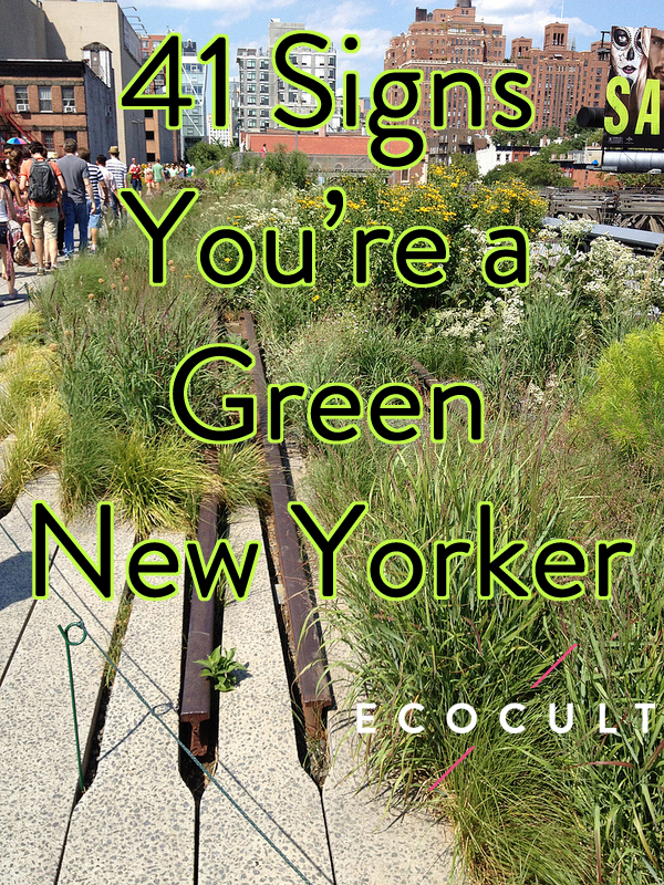 how to now you're a green new yorker