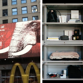 News You Gotta Know: Definitely Don't Shop at Gap
