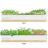 micro greens kit