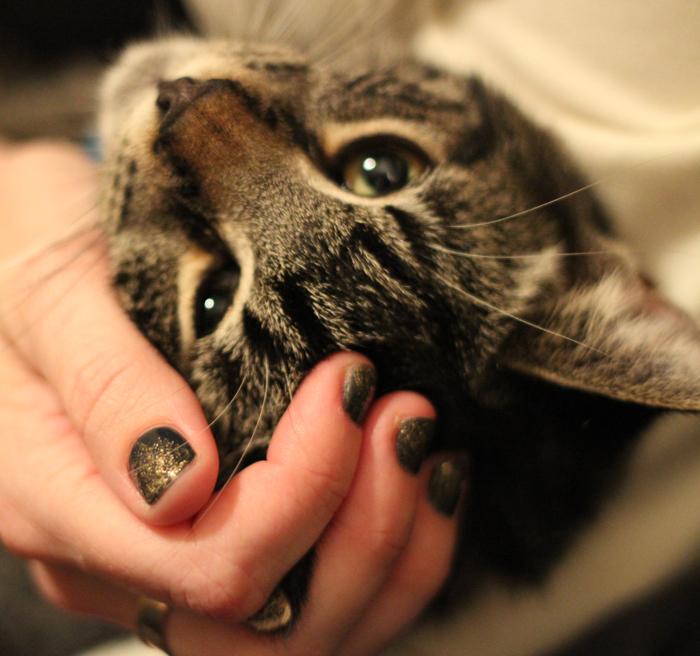 New Year's Nail polish and kitty