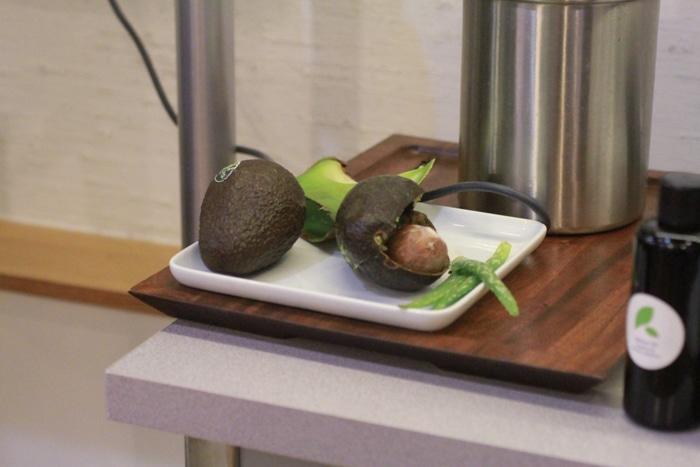 Yarok beauty bar avocado