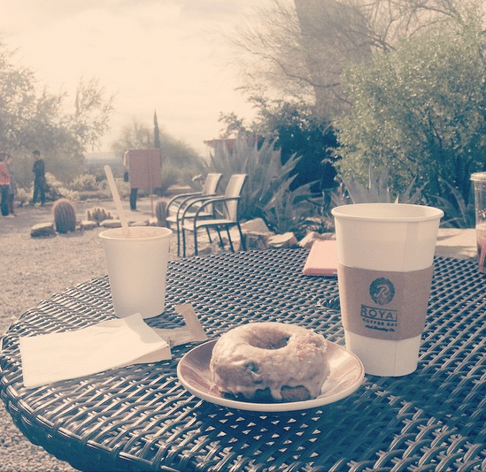 Vegan donut and cactus blossom tea at the Taliesin West cafe