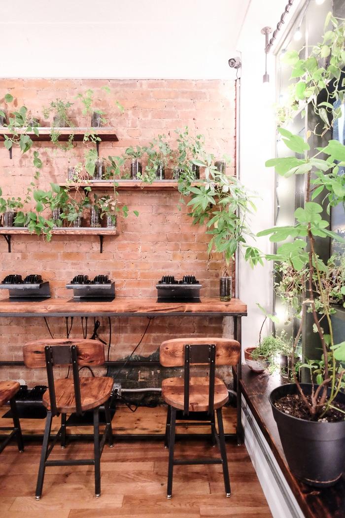 Non-Toxic green nail salon NYC Hortus review