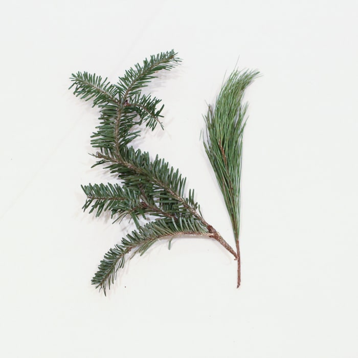 Eco-friendly gift wrap idea: cut sprigs of your Christmas tree or wreath, or ask the tree seller if you can have some branches that fell off