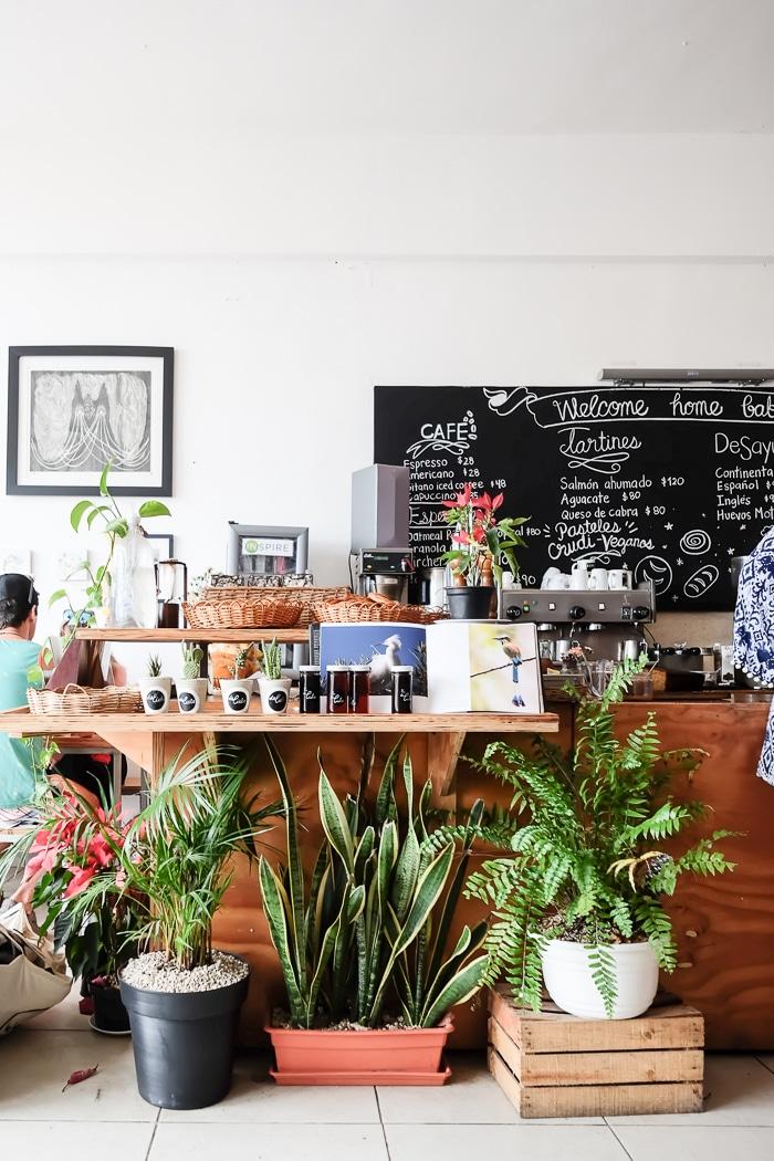 DelCielo Tulum healthy breakfast cafe