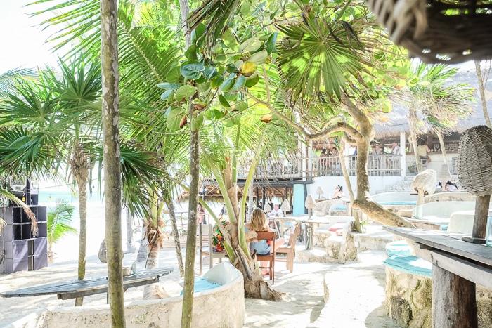 Papaya Playa Project Tulum eco-friendly
