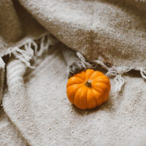12 Eco Bloggers on How They Make Their Halloween Sustainable